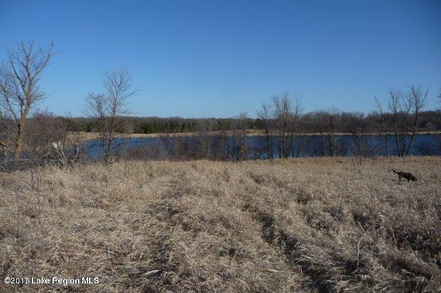 Lot 1 County Road 19 - Ashby, MN 56309