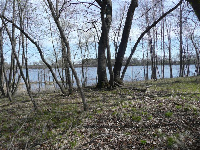 Lot 1 Bluegill Bay Estates - - photo 4