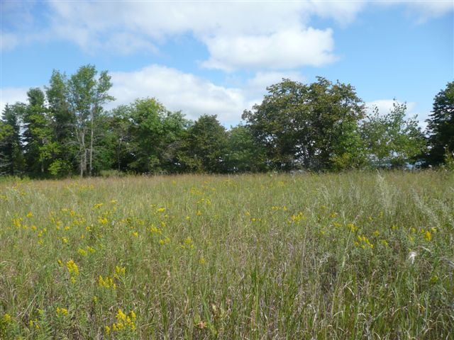 Lot 1 Highway 78 South - Ashby, MN 56309