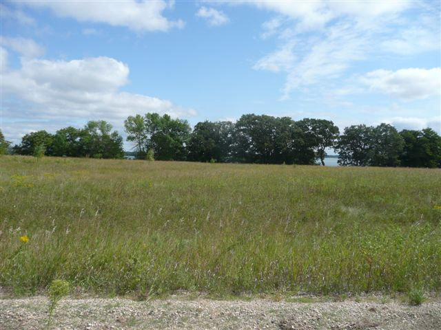 Lot 1 Highway 78 South - - photo 8