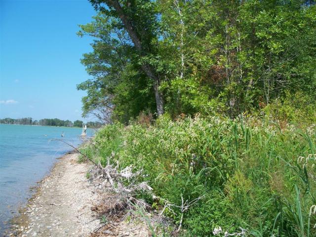 5.4 acres by Dalton, Minnesota for sale
