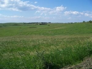 59.96 acres by Ashby, Minnesota for sale