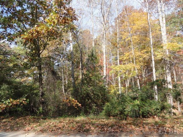0-LOT 14 WINDSOR FOREST Drive Concord, VA 24538