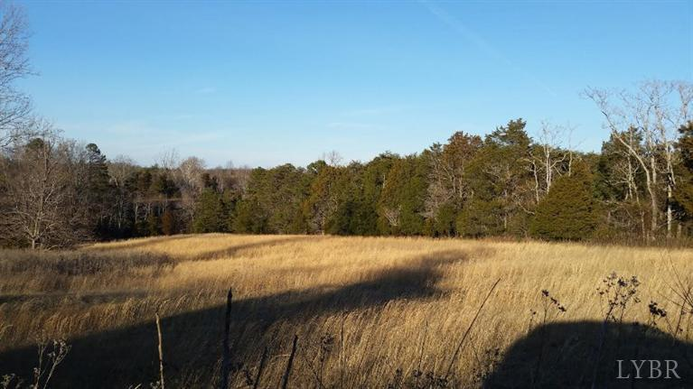 Image of Acreage for Sale near Altavista, Virginia, in Campbell county: 18.14 acres