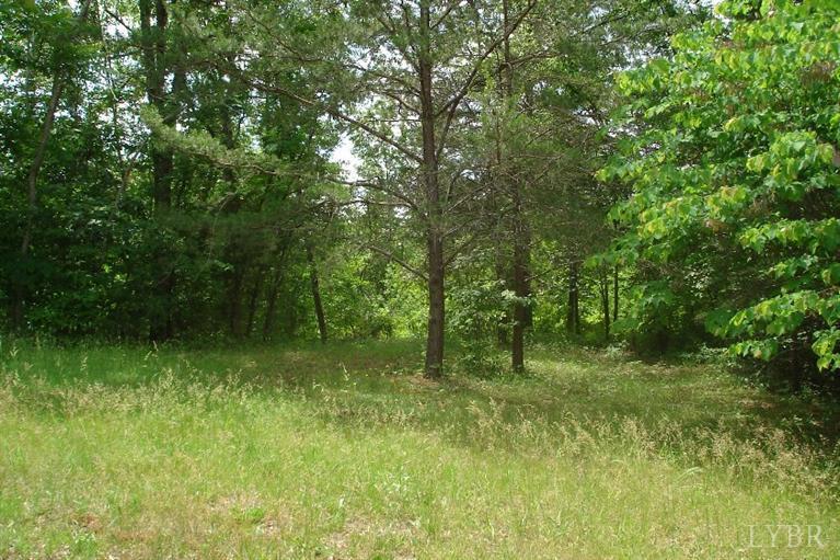 Real Estate for Sale, ListingId: 34713908, Amherst,VA24521