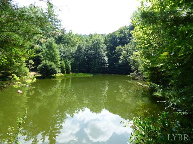 Real Estate for Sale, ListingId: 35260082, Amherst,VA24521