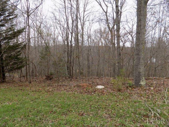 Image of Acreage for Sale near Altavista, Virginia, in Campbell county: 1.50 acres