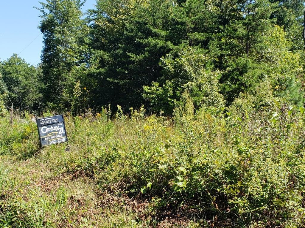 0-Lot 1 Spring Mill Road Concord, VA 24538