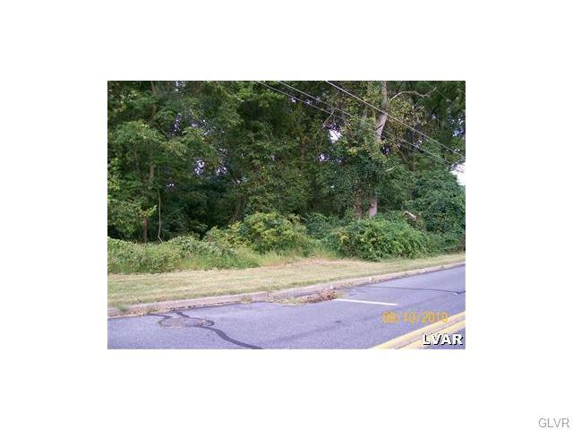 Photo of 0 MineLane Road  Palmer  PA