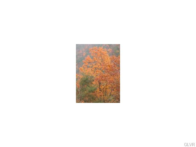 Photo of Lot 205 Bromley Road  Price Twp  PA