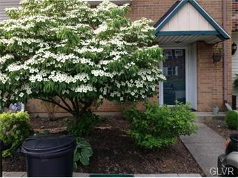 Rental Homes for Rent, ListingId:33298820, location: 1919 Aster Road MacUngie 18062