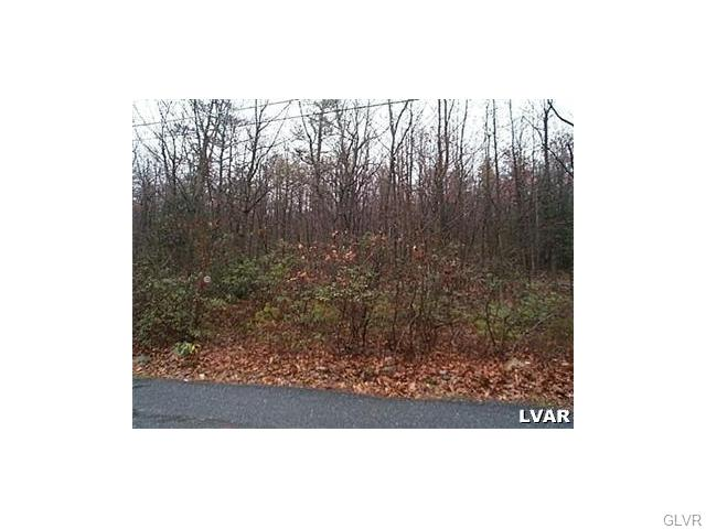 Photo of Quail Drive  Penn Forest Township  PA