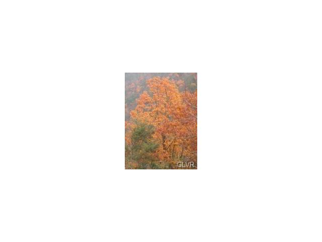 Photo of Lot 208 Big Oak Road  Barrett Twp  PA
