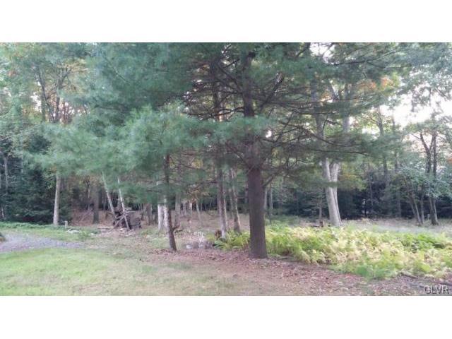 Photo of White Oak Drive  Penn Forest Township  PA