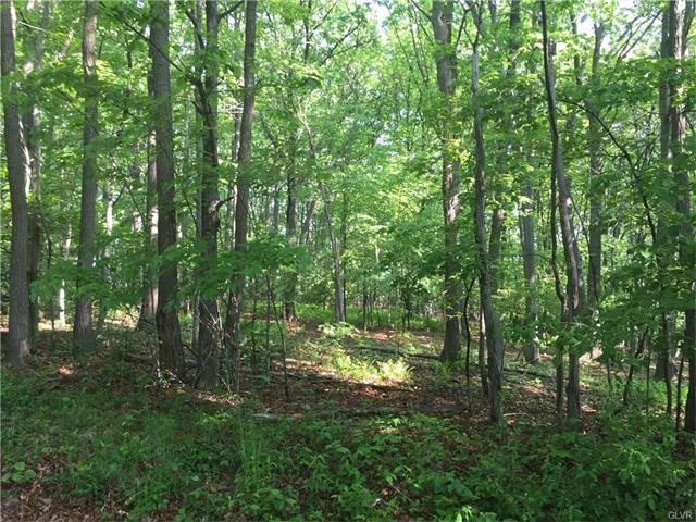 Photo of Pine Hollow Drive  Mahoning Township  PA