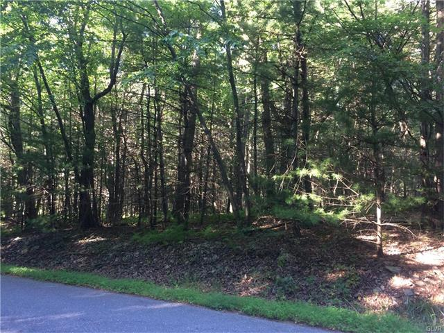 Photo of Lot 108 Cedar Way  Lower Towamensing Tp  PA