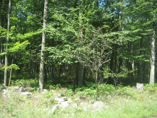 Photo of Orange Lane  Penn Forest Township  PA