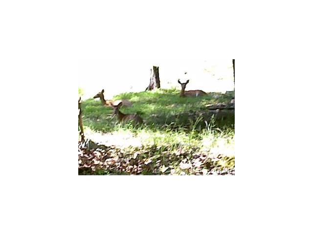 Photo of 87 Huron Circle  Luzerne County  PA