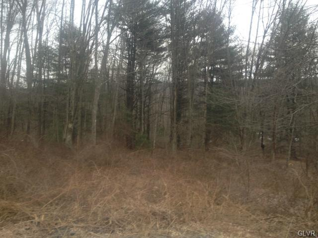 Photo of 250 Owl Creek Road  Schuylkill County  PA