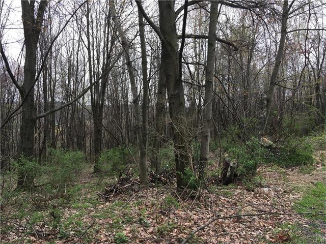 Photo of 0 Oak Lane  Schuylkill County  PA