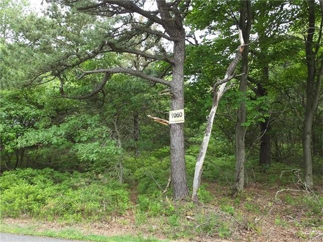 Photo of 1060 Petrarch Trail  Penn Forest  PA