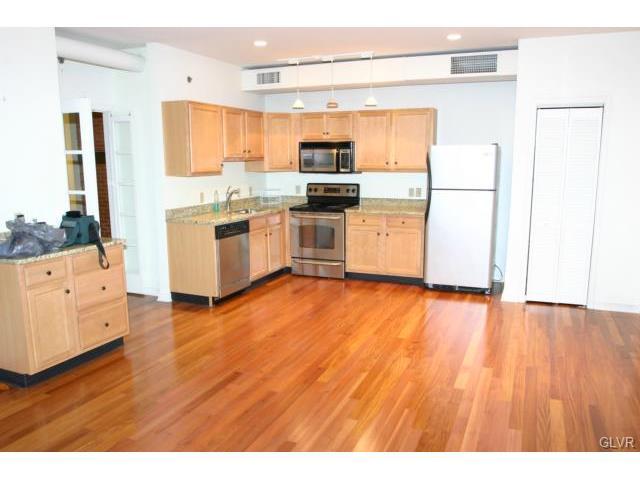 Contemporary, Apartment Style - Bethlehem, PA (photo 4)
