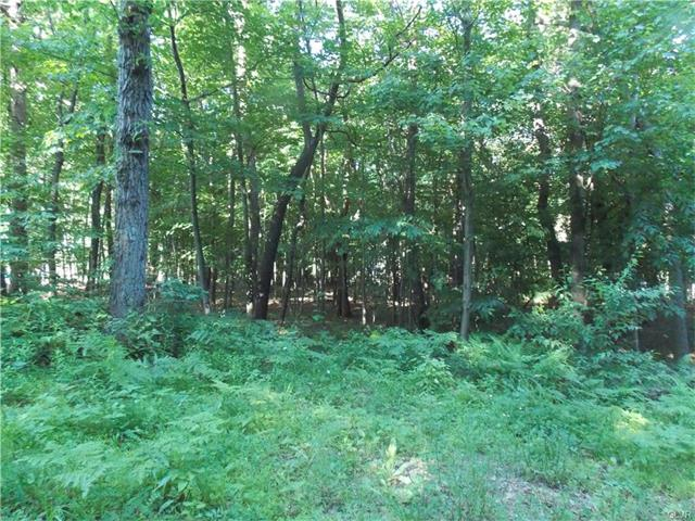 Photo of Lot B266 Holowinsky Avenue  Mahoning  PA