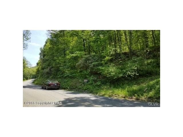 Photo of Lot 2 Blue Mountain Land  Eldred  PA