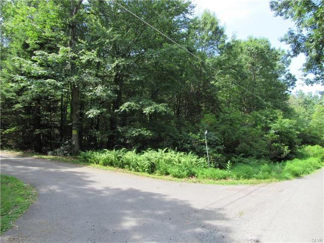 Photo of Wargo Drive   Shadblue Lane  Penn Forest  PA