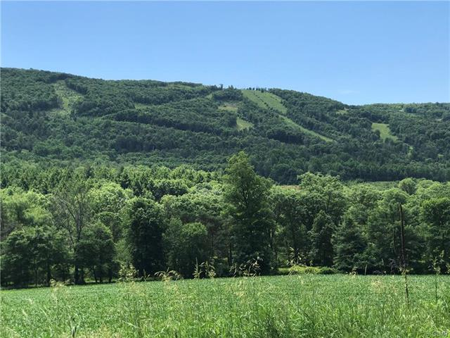 Lower Smith Gap Road Eldred, PA 18058