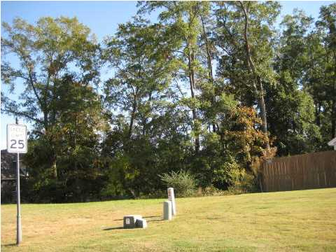 48 MACALLISTER Ridge Millbrook, AL 36054