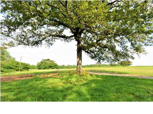 Real Estate for Sale, ListingId: 30813178, Deatsville,AL36022