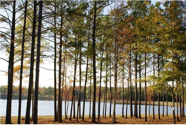 Real Estate for Sale, ListingId: 27921046, Mathews,AL36052