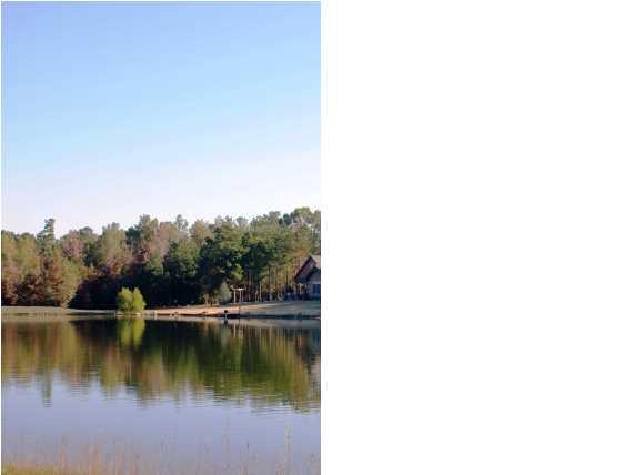 Real Estate for Sale, ListingId: 27921050, Mathews,AL36052