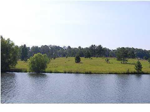 Real Estate for Sale, ListingId: 28153295, Fitzpatrick,AL36029