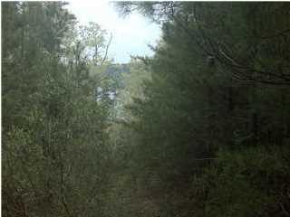 1.01 acres by Clanton, Alabama for sale