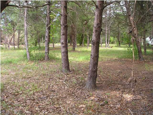 4.68 acres by Ramer, Alabama for sale
