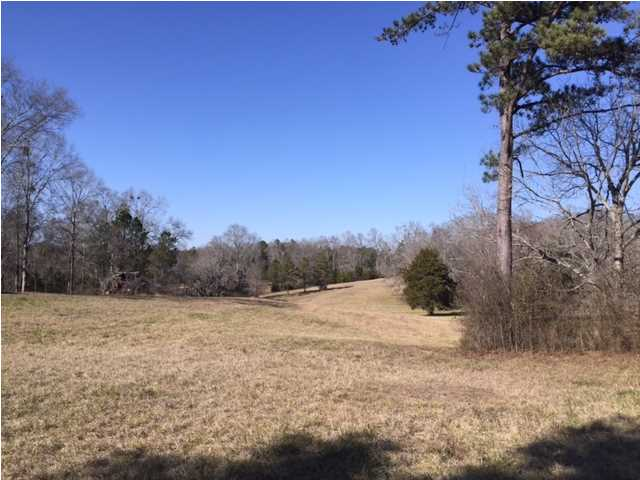 7.27 acres by Hope Hull, Alabama for sale