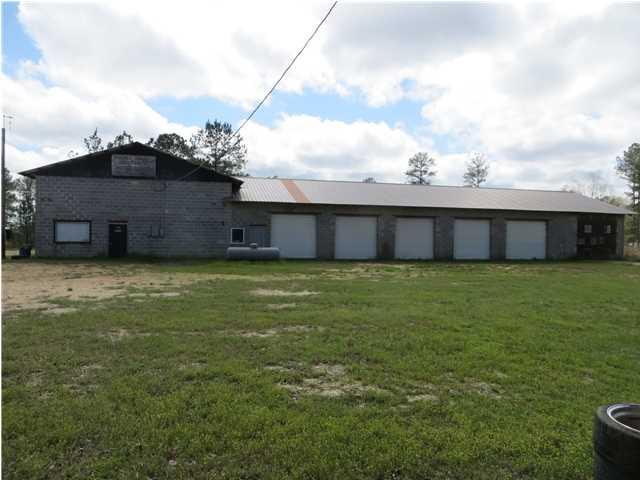 Real Estate for Sale, ListingId: 32459872, Georgiana,AL36033