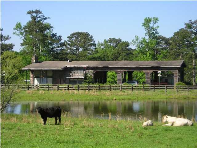 130 acres Eclectic, AL