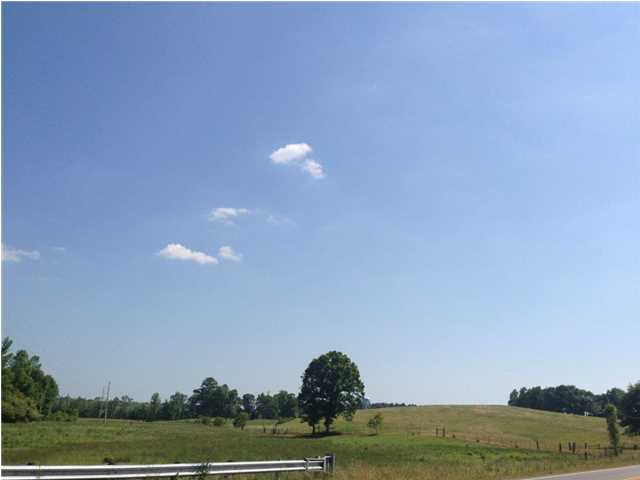 Image of Acreage for Sale near Wetumpka, Alabama, in Elmore County: 71 acres
