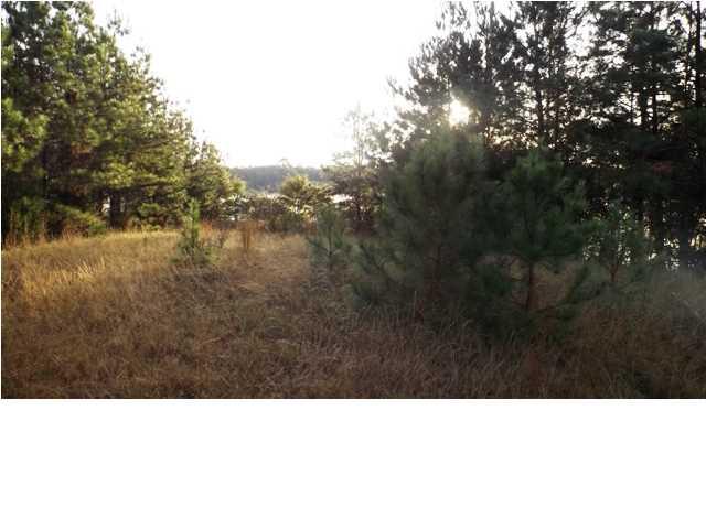 Image of Acreage for Sale near Autaugaville, Alabama, in Autauga county: 0.78 acres