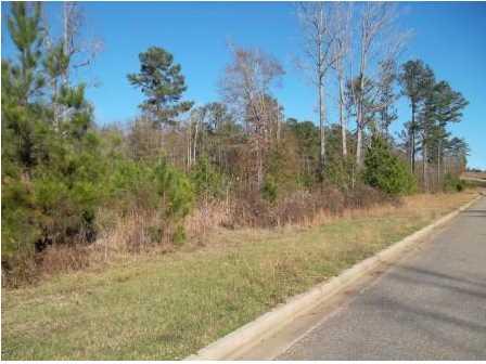 Real Estate for Sale, ListingId: 36575827, Deatsville,AL36022