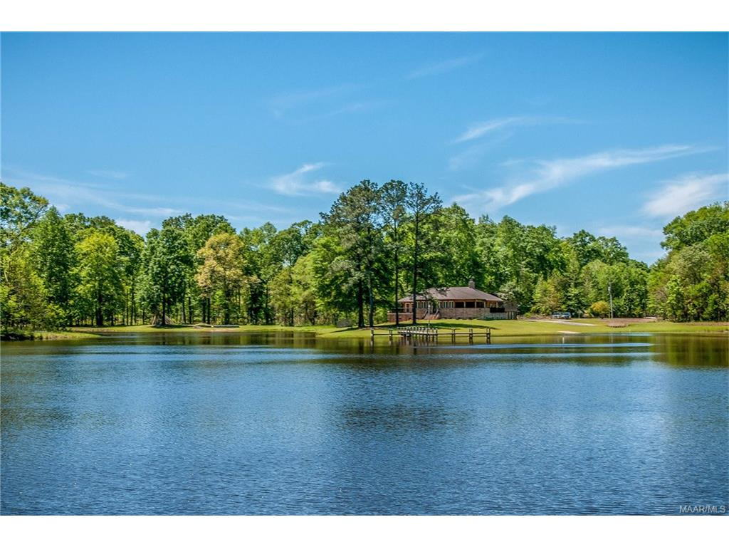 Image of Acreage w/House for Sale near Hope Hull, Alabama, in Lowndes County: 247 acres