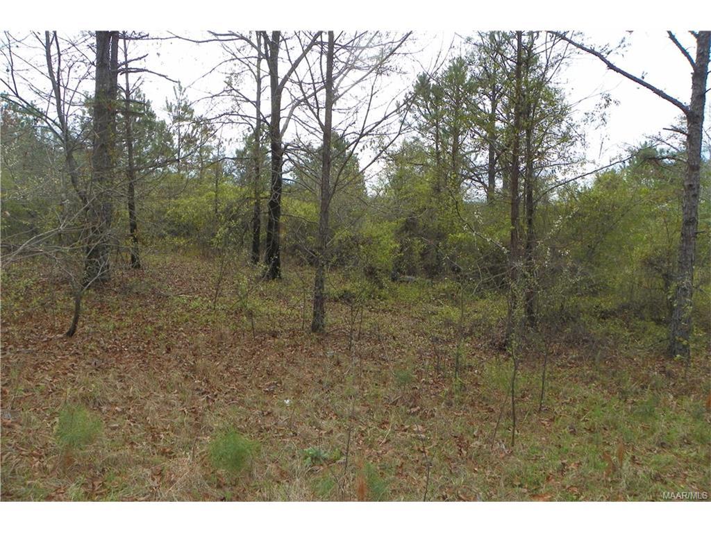 0000 Ridge Trail Road Prattville, AL 36066