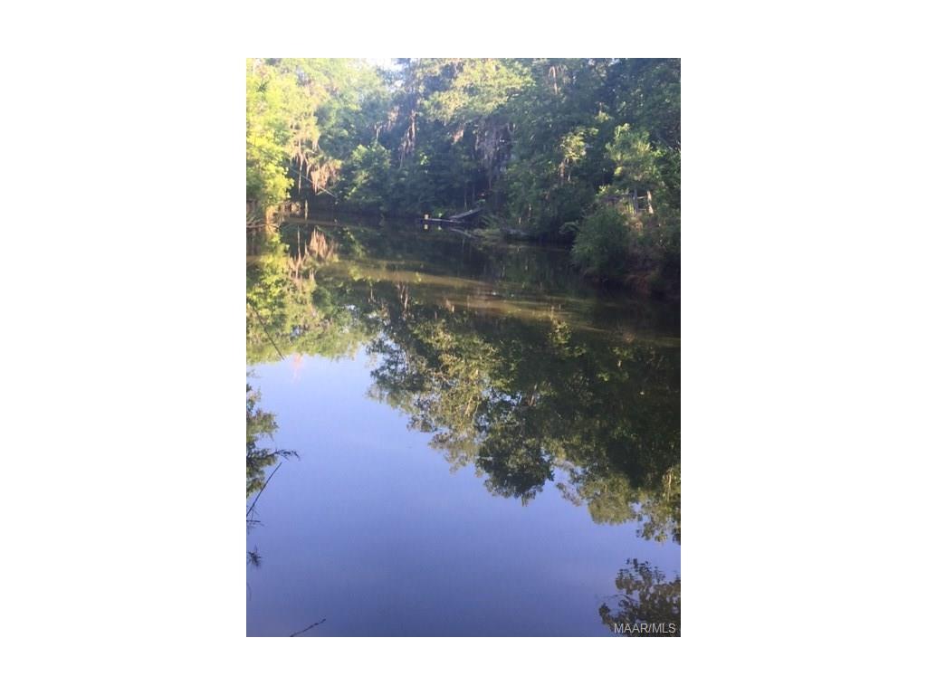 Alabama wilcox county catherine - Lakeshore Drive Camden Al 36726