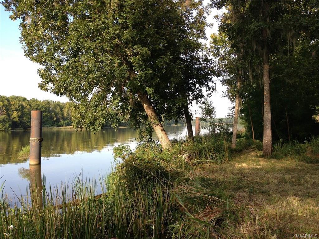 Alabama wilcox county catherine - Shadow Creek Circle Camden Al 36726