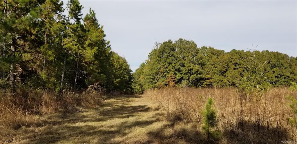 69+/- Acres Sunny Acres Road Ozark, AL 36360