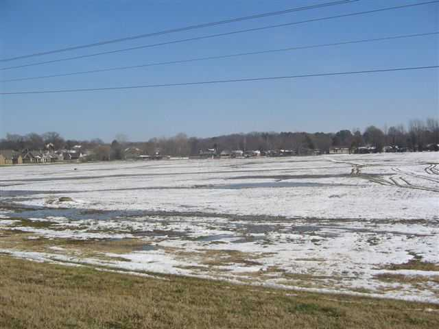 Image of Acreage for Sale near Ripley, Tennessee, in Lauderdale county: 25.00 acres