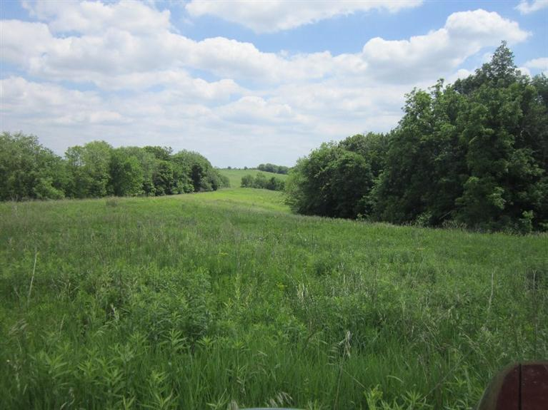 22 acres by Maquoketa, Iowa for sale